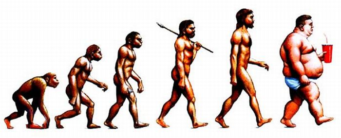 evolution of the genus homo the modern synthesis